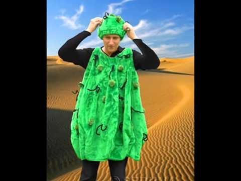 F30 Kaktus Fasnacht Kostüm Plüschkostüm Karneval Bekleidung