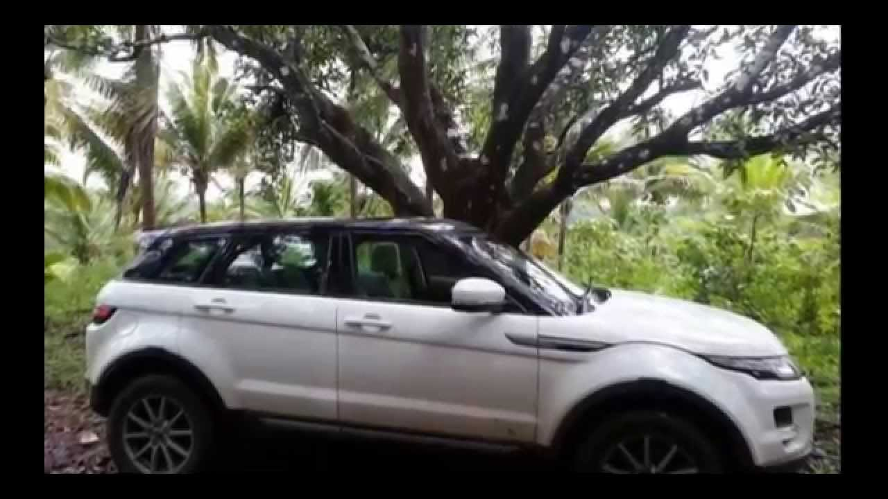 Largest Collection Of Luxury Cars In Kerala Youtube