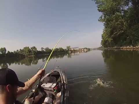 Nashville kayaking to cmafest 2016 doovi for Cumberland river fishing