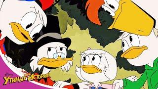 НОВЫЕ Утиные истории - Сборник 7 - Мультфильм Disney