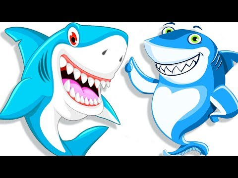 Baby Shark   Baby Dance Songs   Kids Songs & Nursery Rhymes