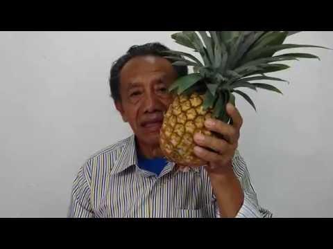 Fruta para adelgazar abdomen