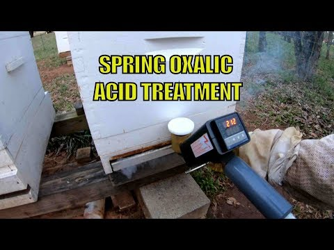 Beekeeping: Spring Varroa Mite Treatment With Oxalic Acid Vaporizer Made By Provap