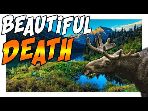 The Hunter Call Of The Wild | TAKING PICTURES AND KILLING ANIMALS | MADD Hunt 14
