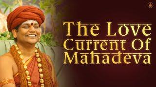 The Love Current Of Mahadeva