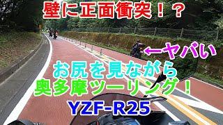 たましぐさんからお誘いを受けまして、YZF-R25で奥多摩ツーリングに行きました。 参加メンバーはたましぐさん(YZF-R25)、ゆうさん(YZF-R25)、ゼロさん(MT-25)、私の4人 ...