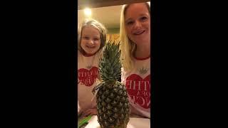 Weight Watchers Pineapple Corer Slicer Live Demo