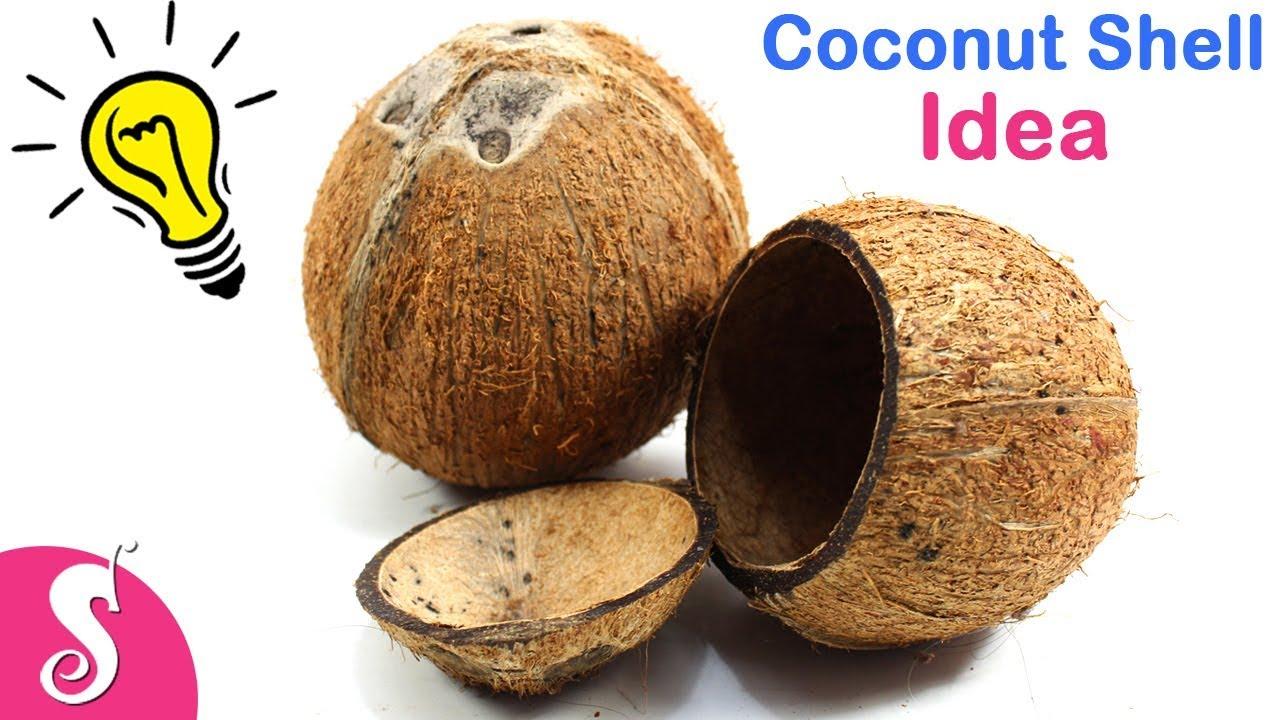 Coconut Shell Idea Make Innovative Flowers Hanging Vase