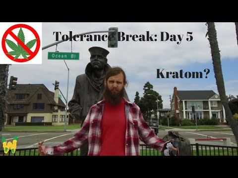 Day Five: Kratom Experiences--Dispatches From the Tolerance Break