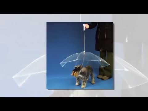Waterproof Clear Cover Pet Umbrella