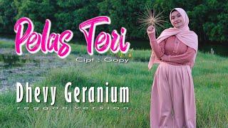 PELAS TERI - DHEVY GERANIUM ( REGGAE VERSION )