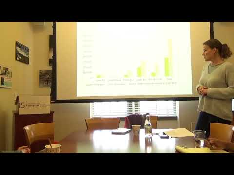 Céline Teney - Immigration of European Highly Skilled Workers to Germany