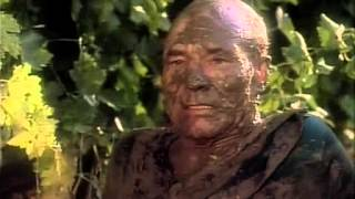 Captain Picard's emotional collapse.