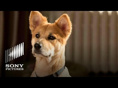 ANNIE Movie (2014) - Meet Sandy The Dog