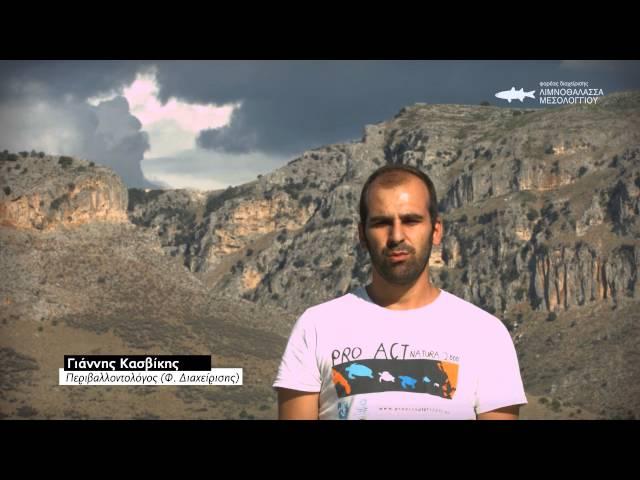 Γαλήνη και απόκοσμη ατμόσφαιρα στη λιμνοθάλασσα του Μεσολογγίου (φωτο+video)   6ad69f9e79c