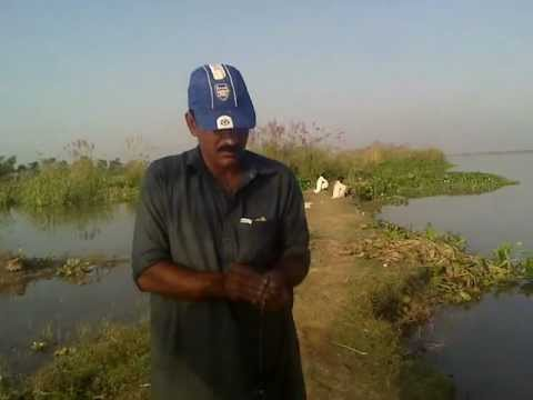 fishing in pakistan  rizwan weight chari head islam.mp4