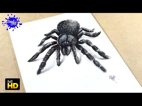 How to draw  Spider 3D / Como dibujar araña  3D