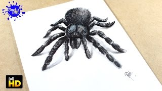 How to draw  Spider 3D / Como dibujar araña  3D