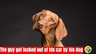 The guy got locked out of his car by his dog,
