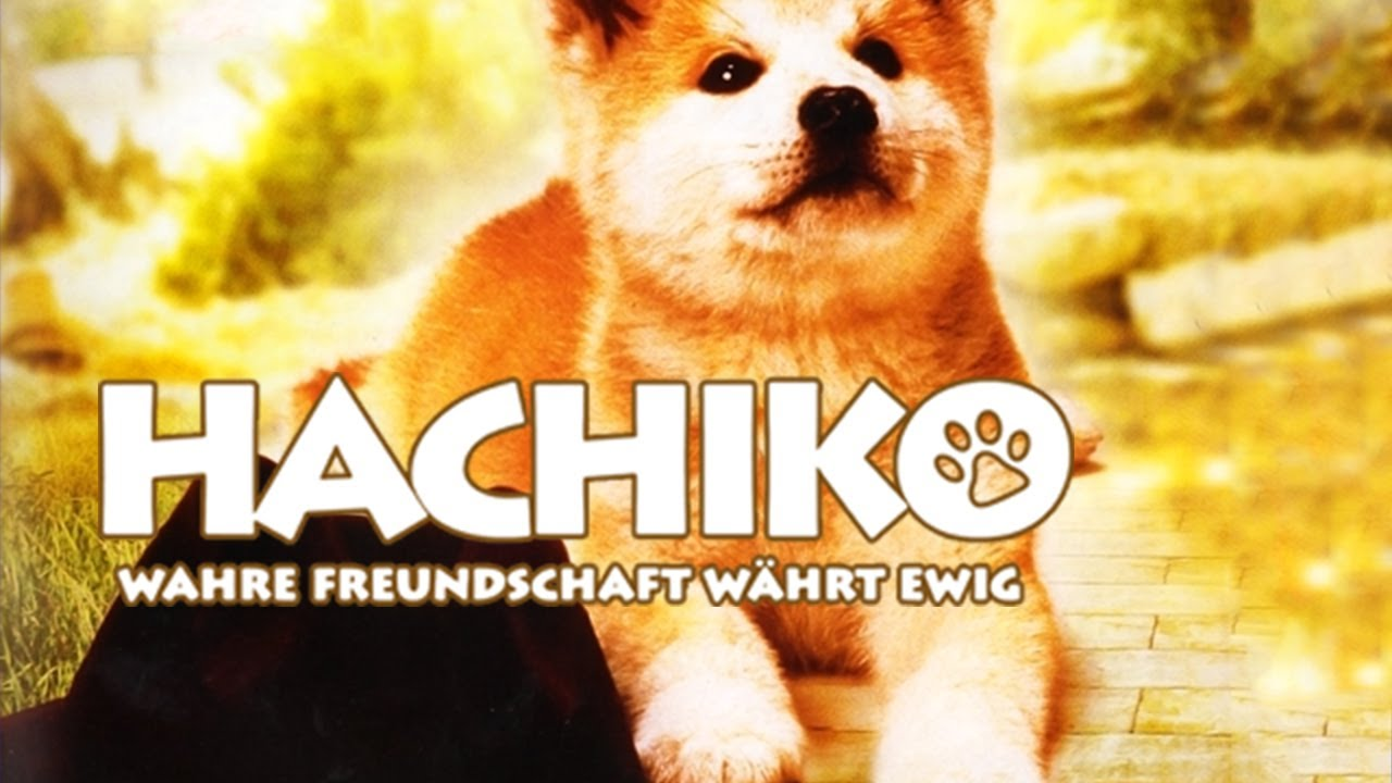 Hachiko Wahre Freundschaft Währt Ewig