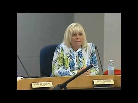 Councilwoman Gaydos, Aug 8, 2017 Discussing Seismic Testing Ordinance