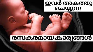 Pregnancy Fun - Enjoy your Pregnancy Journey| 8 Interesting Findings