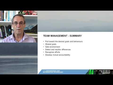 08 Team managementsummary