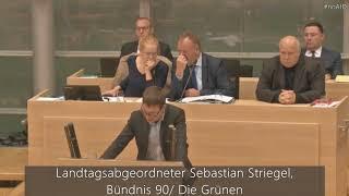 Parlamentarische Innovation der AfD-Fraktion Sachsen-Anhalt am 26.10.2017