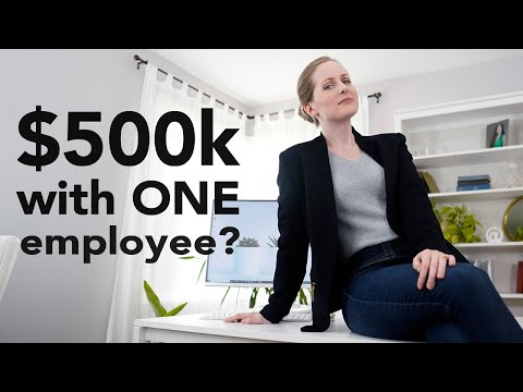 Running a $500,000 company with ONE employee