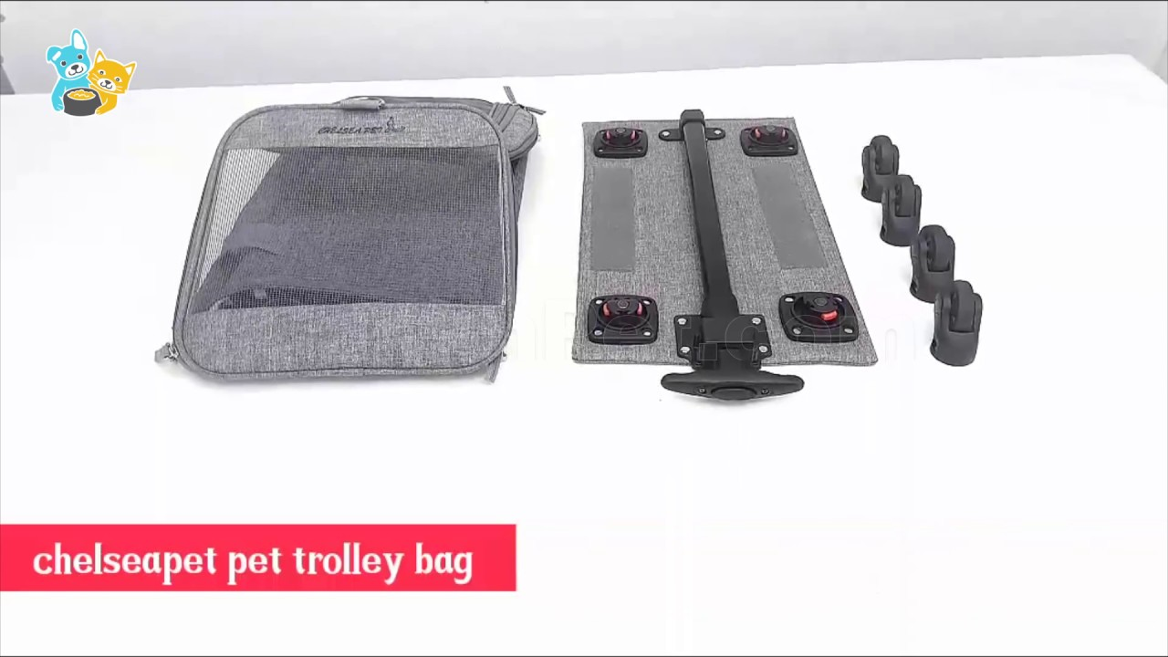 Light-weight Foldable Soft Dog Trolley Carrier Pet Crates with Removable  Wheels P423 - Canlin Pet