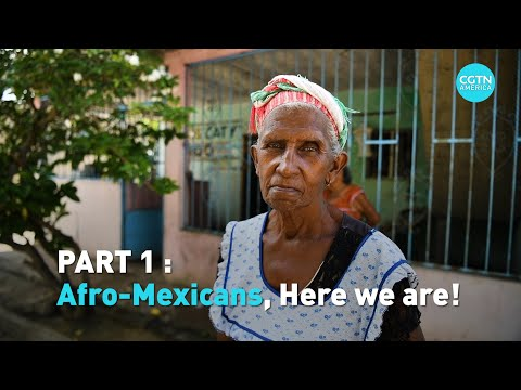 Afro-Mexicans: One of the world's most forgotten Black communities