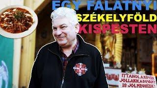 Budapest LEGJOBB SZÉKELY étterme⎮ PANÍR ALATT