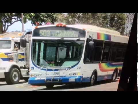 TheBus Honolulu 2001 Chance Opus #30 Route 503 Picture