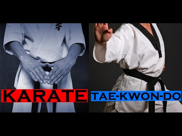 Taekwondo diferencia karate What Are