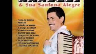Download lagu Nardeli & Sua Sanfona Alegre
