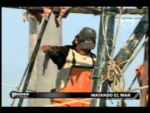 Matando el mar peruano ministerio de pesqueria existe for Ministerio de pesqueria