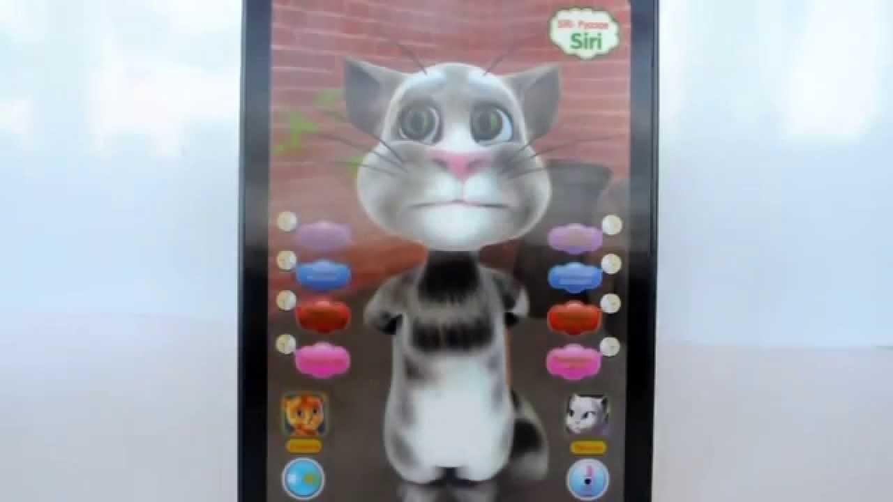 Игрушка говорящий кот в планшете
