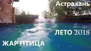 ЖАР-ПТИЦА Банный комплекс Астрахань