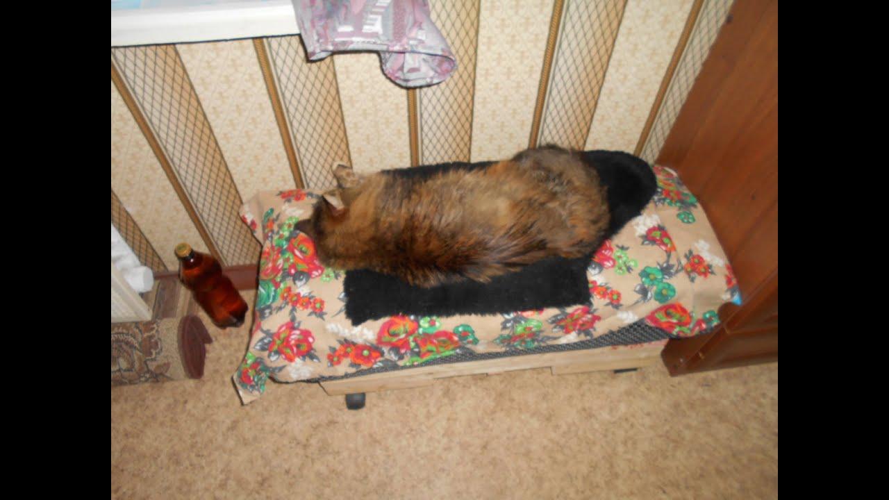 «Кроватка» для Мурки. Лежанка для кошки своими руками 32