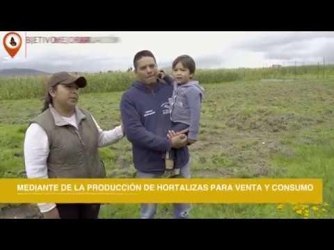 OHL México | Ruta Monarca