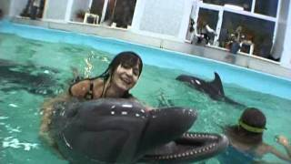 Москва Утришский дельфинарий (видео под водой) 2-3