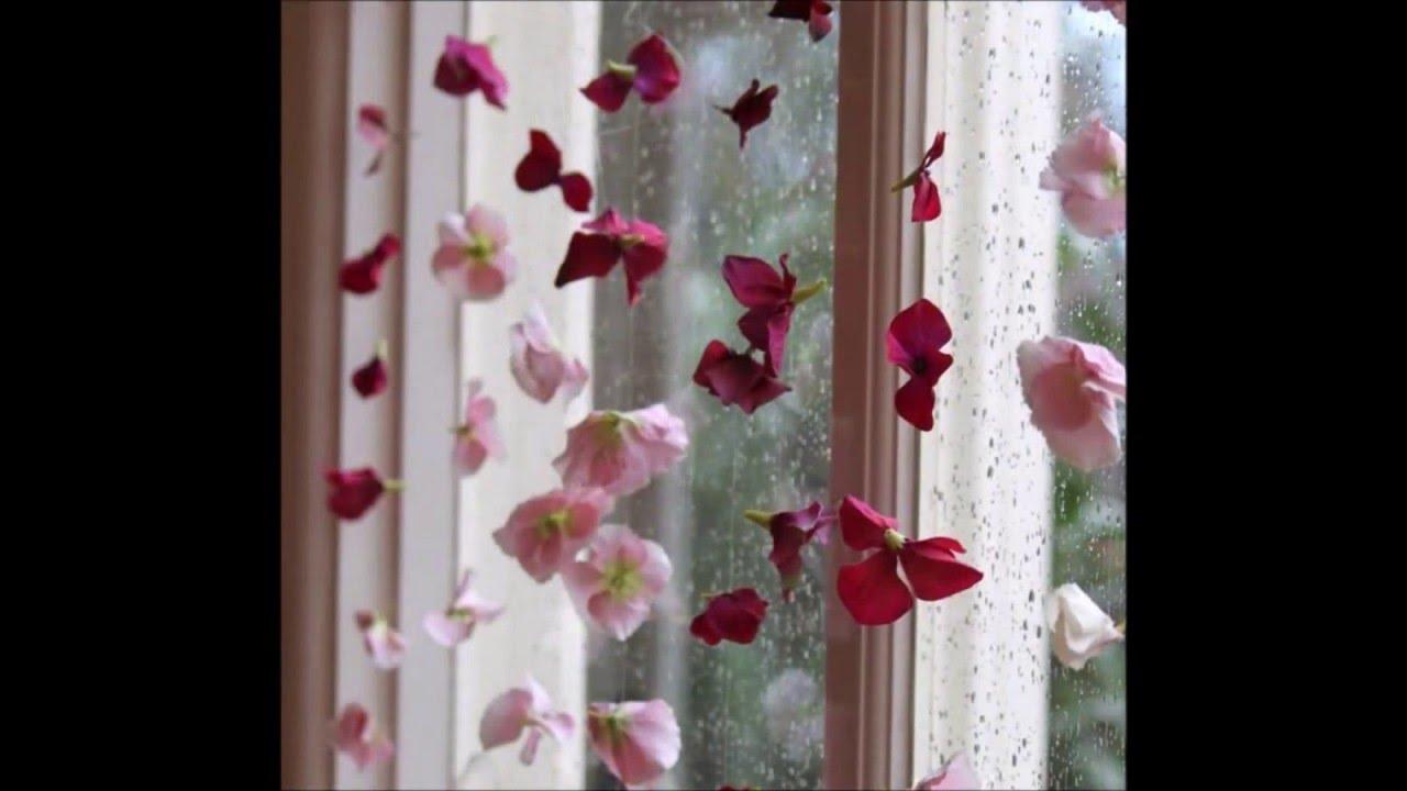 Ideas para decorar ventanas sin cortinas  YouTube