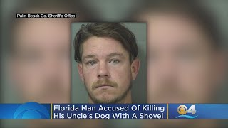 Florida Man Accused Of Fatally Beating Uncle's Dog With A Shovel
