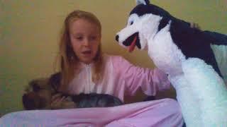 Обзор на игрушечных собак/Реакция на собак/Видео с Фиджеком/Tom i Mari