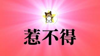 习近平发明确激进信号,三点状况下中国要开战,比江胡时代多一点|中国大力扩充军备,只会用于内循环吗?毛泽东的忠诚粉丝