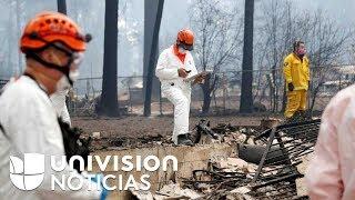 Aumenta el número de muertos y de desaparecidos por el colosal incendio en el norte de California