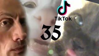 Рандомные клипы из тиктока. Часть 35