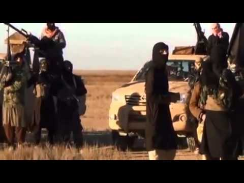 Iraqi forces HIT back at Militants   Sunni militant PUSH on Baghdad 'halted'   BREAKING NEWS HQ