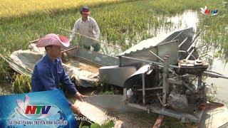 Người chế tạo máy gặt lúa vùng sình lầy, ngập nước