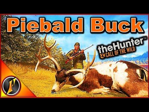Piebald Buck & Melanistic Coyote   theHunter: Call of the Wild 2018